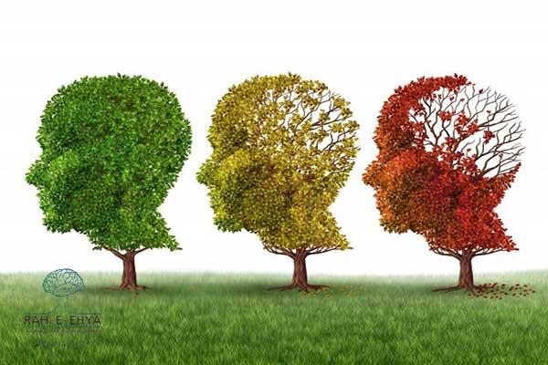 داروی متفورمین و آلزایمر